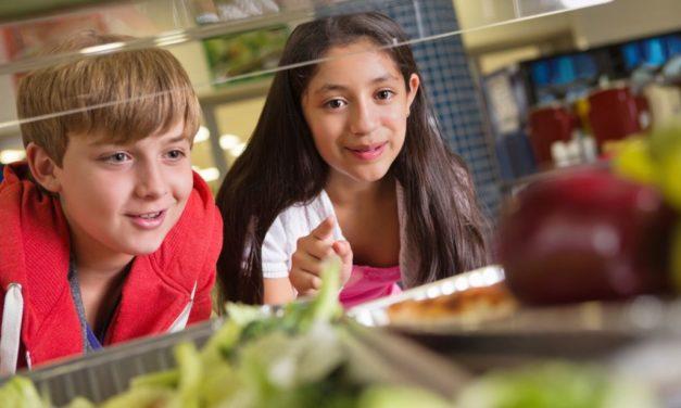 Okullarda Beslenme Eğitimi