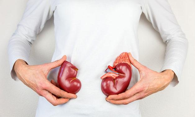 Böbrek Hastalıklarında Beslenme