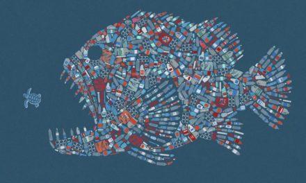 Mikroplastiklerden Uzak Yaşamak İçin 9 Tavsiye