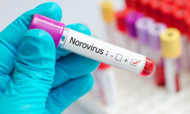 Norovirüs Nedir?