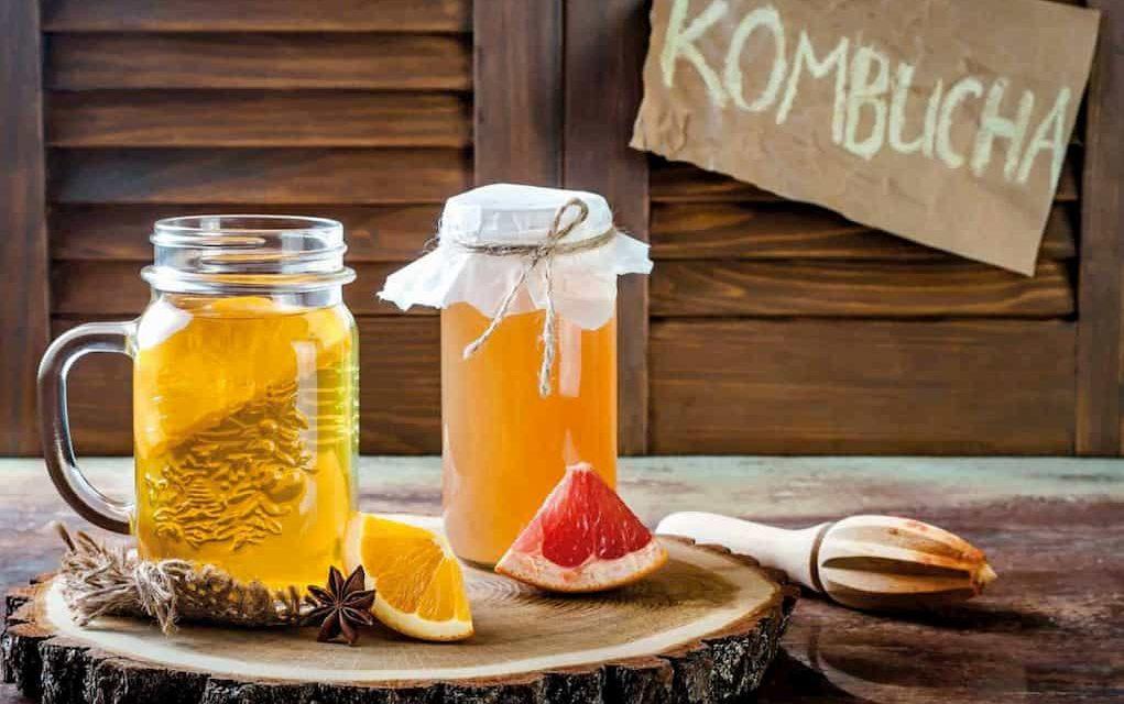 Kombucha Çayı Nedir?